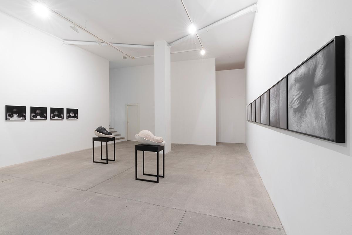 Anna Maria Maiolino – Aqui e Agora