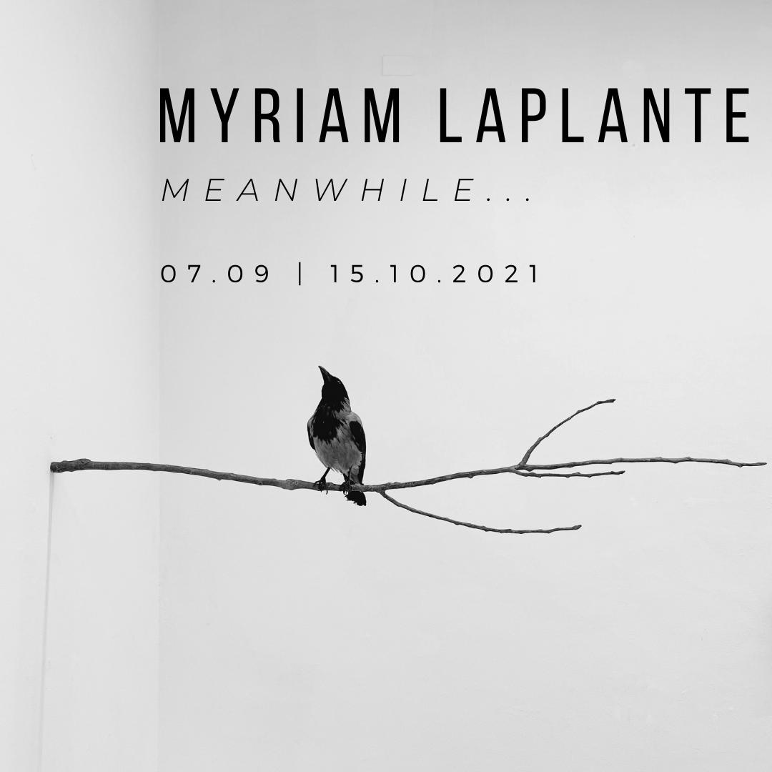 Myriam Laplante   Meanwhile...